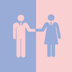 feministiki anisotita